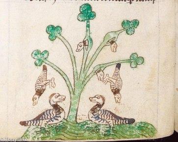 600px-From_Topographia_Hibernica_British_Library_MS_13_B_VIII